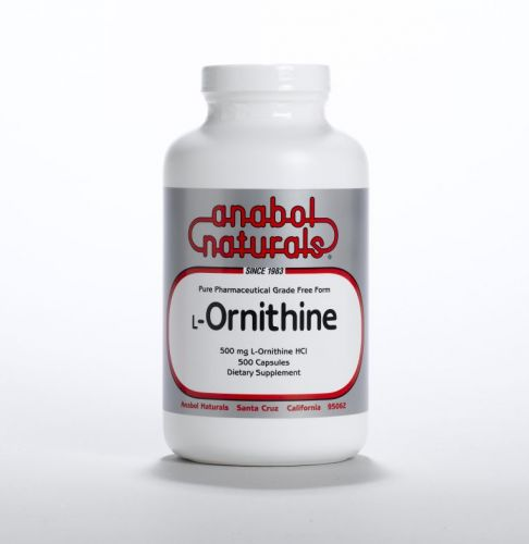 L-Ornithine  - 500 grams Powder